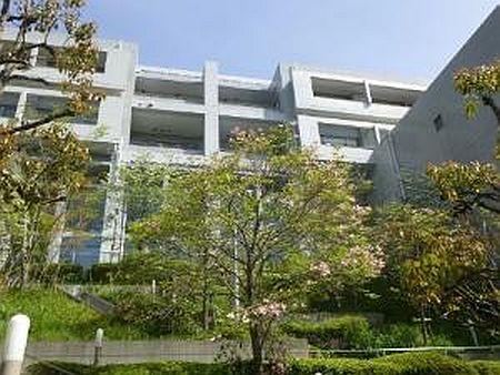 東京都立南多摩看護専門学校 | 学校案内、資料請求はコチラ | ベスト ...