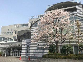 東京都立北多摩看護専門学校