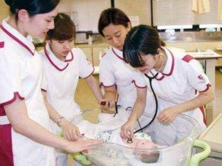 値 歯科 東京 医科 大学 偏差 国公立の東京医科歯科大学 偏差値