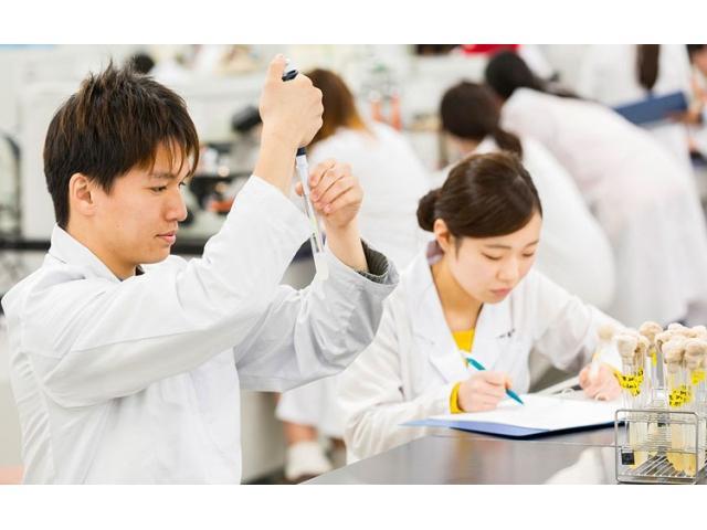 大学 オープン キャンパス 科学 京都 先端